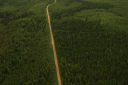 Royalty Free Photo of an Aerial of a Roadway