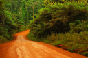 Royalty Free Photo of a Scenic Trail