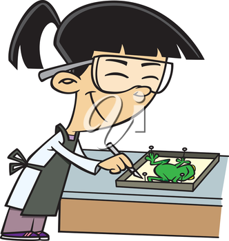 Royalty Free Clipart Image of a Girl Dissecting a Frog