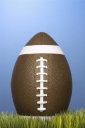 Royalty Free Photo of a Studio Shot of a Football Resting in Grass
