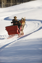 Royalty Free Photo of a Man Driving a Horse Drawn Sleigh