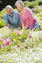 Royalty Free Photo of a Senior Couple in a Flower Bed