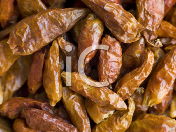 Royalty Free Photo of Dried Birds Eye Chilies