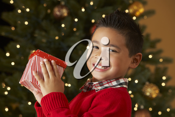 Boy Holding Christmas Present In Front Of Tree