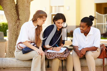 Group Of Female High School Students Working Outdoors