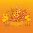 Harvest background with place for your text