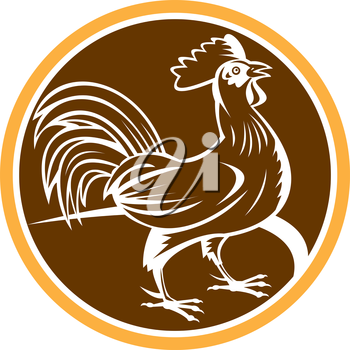 Illustration of a chicken rooster standing viewed from side set inside circle on isolated background done in retro woodcut style.