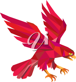 Low polygon style illustration of a peregrine falcon hawk eagle bird swooping viewed from the side set on isolated white background.