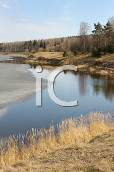 Royalty Free Photo of the Last Ice on a Lake