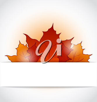 Illustration autumnal maple leaves sticking out of the cut paper - vector