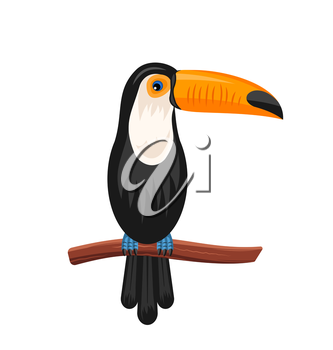 Illustration Funny Toucan Sitting on Branch, Exotic Bird Isolated on White Background - Vector
