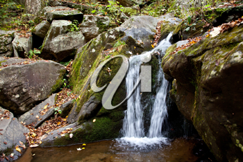 Royalty Free Photo of a Small Waterfall in the Forest
