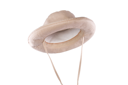 Royalty Free Photo of a Hat