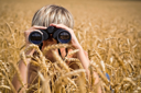 Royalty Free Photo of a Boy in a Field of Wheat