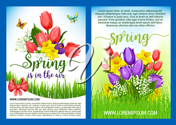 Hello Spring greeting poster vector holiday design of springtime flowers. Blooming bouquets and wreath of tulips, daffodils or crocuses, narcissus and lily of valley with bow ribbons in green grass