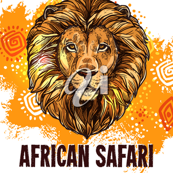 African Safari poster with lion for hunting or zoo design template. Vector wild Africa animal muzzle of savanna cheetah panther or jaguar leopard for hunter club or open hunting season