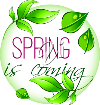 Spring is coming icon of green leaf for springtime seasonal greeting card. Vector isolated spring tree plant sprouts of flowers or grass with nature dew or water drops