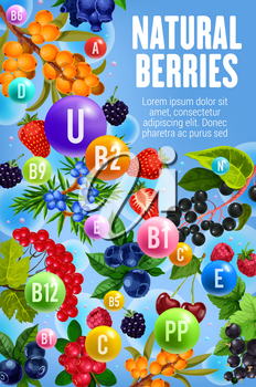 Vitamins and minerals in garden and forest berries. Vector multivitamins complex in berry fruits cherry, cranberry or sea buckthorn, honeysuckle and juniper, blackcurrant berry and organic barberry