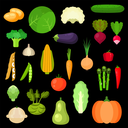 Pumpkin and tomato, potato and pepper, carrot and cabbage, onion and eggplant, cucumber and corn, broccoli and beet, radish and artichoke, bean and pea, garlic and zucchini, cauliflower and asparagus,