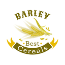 Barley grain cartoon badge. Ripe ear of cereal with ribbon banner and header. Agriculture symbol, organic farm and mill sign design