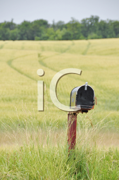 Royalty Free Photo of a Mailbox in a Field