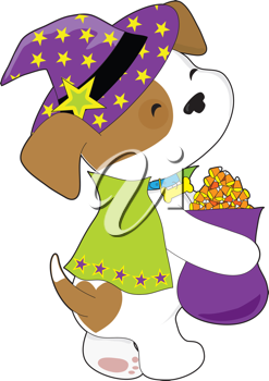 A cute puppy is carrying a bag full of Halloween candy corn and is dressed like a wizard or witch