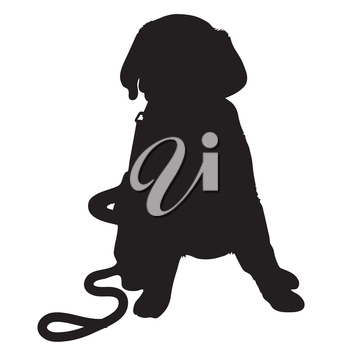 A black silhouette of a Labrador Retriever puppy with a leash by its side