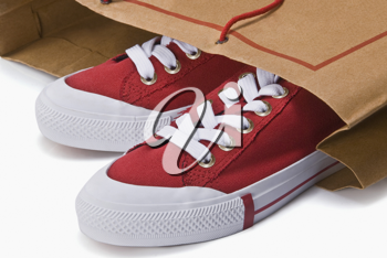Close-up of a pair of canvas shoes in a shopping bag
