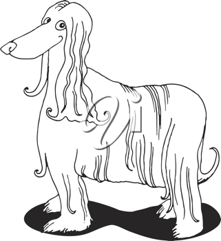 Royalty Free Clipart Image of an Afghan Hound