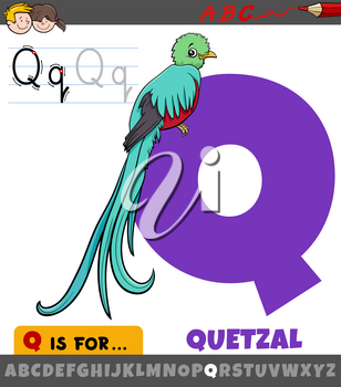 Educational cartoon illustration of letter Q from alphabet with quetzal bird animal character symbol for children