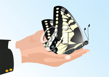 Royalty Free Clipart Image of a Butterfly in a Hand