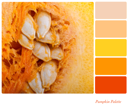Pumpkin background colour palette with complimentary swatches.