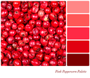 A background of pink peppercorns in a colour palette, with complimentary colour swatches