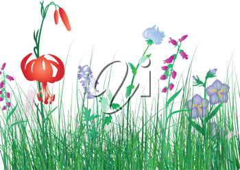 Royalty Free Clipart Image of a Meadow