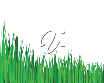 Royalty Free Clipart Image of a Grass Illustration