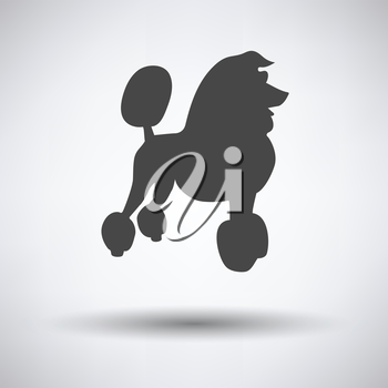 Poodle icon on gray background with round shadow. Vector illustration.