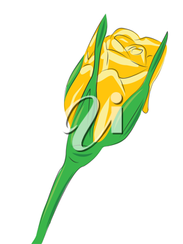 Royalty Free Clipart Image of a Yellow Flower on white Background