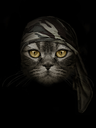 dark muzzle cat  in brown camouflage Headband