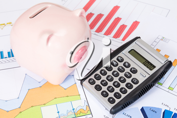 Piggy bank and calculator with printed out business charts