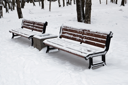 Two benches in winter park
