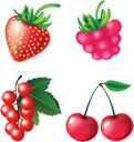 Royalty Free Clipart Image of a Set of Berries