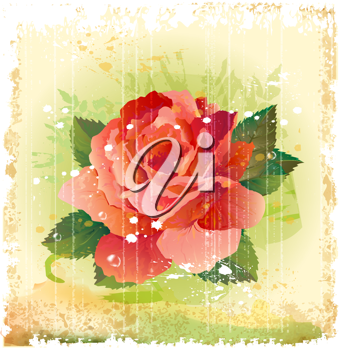 Royalty Free Clipart Image of a Red Rose Illustration