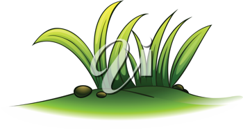 Illustration of a plant element