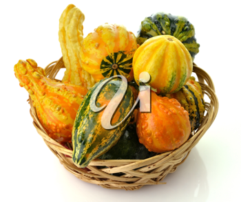 Royalty Free Photo of Gourds in a Basket