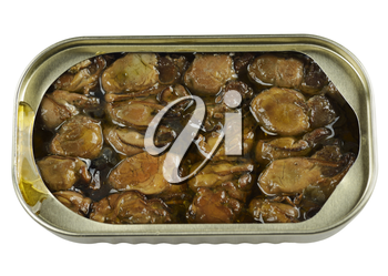 Canned Smoked Oysters Isolated On White Background