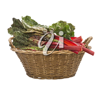 Fresh swiss chard in a basket , isolated on white background