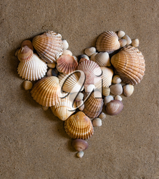 A shell heart on sand - valentine day concept