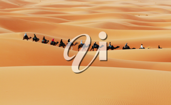Royalty Free Photo of a Caravan in the Sahara Desert