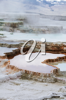 Royalty Free Photo of Mammoth Hot Spring in Yellowstone Park, USA