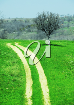 Royalty Free Photo of a Road in a Field